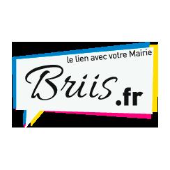 logo site Briis